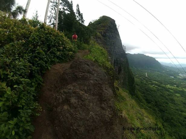 The ridge line is like this. You will follow the trail past a utility pole.