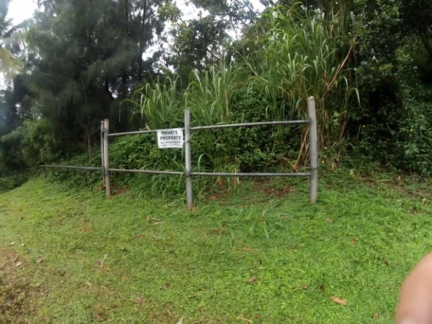 This is at the end of the guard rail. The trail is on the left of this gate.